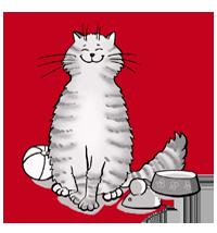 Katzenbetreuung in Braunschweig und Wolfsburg