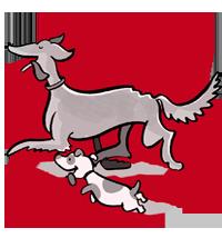 Hundebetreuung in Heidelberg und Mannheim