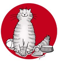 Katzenbetreuung in Karlsruhe
